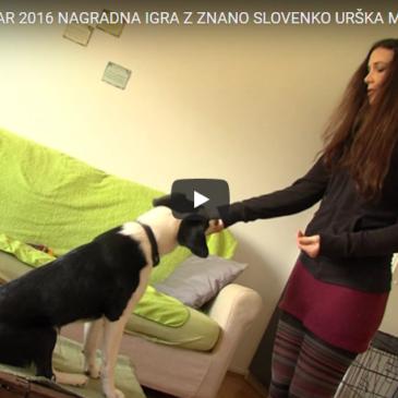 Nagradna igra z znano Slovenko Urška Majdič