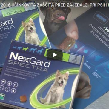 Učinkovita zaščita pred zajedalci pri psih in mačkah