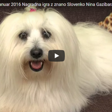 Nagradna igra z znano Slovenko Nina Gazibara
