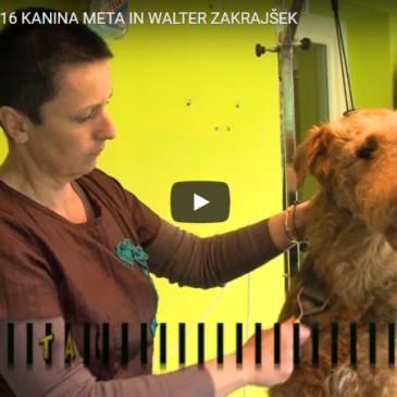 Kanina Meta in Walter Zakrajšek