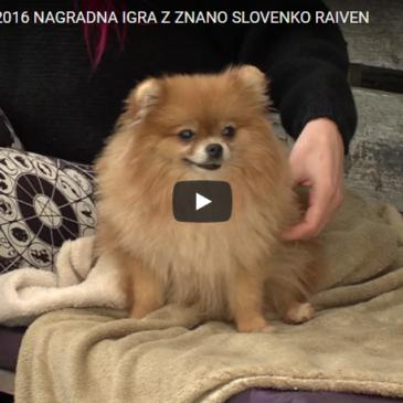 Nagradna igra z znano Slovenko Raiven
