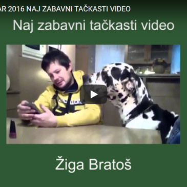 Naj zabavni tačkasti video