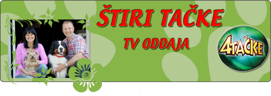 4 Tačke – TV oddaja