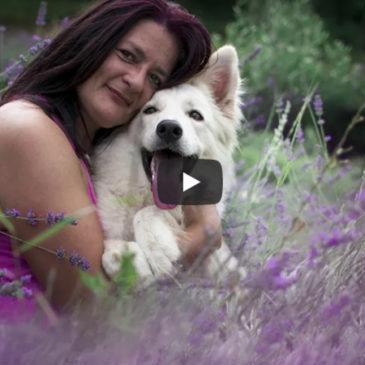 Fotografinja psov: Sandra Ahčin