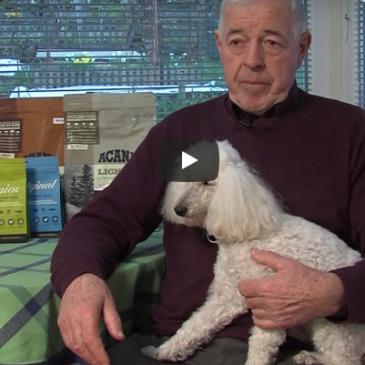 Veterinarski nasvet: Pravilna prehrana pri predebelih psih