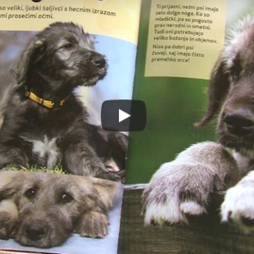 Priporočamo: Knjiga Najbolj srčkani pasji mladički