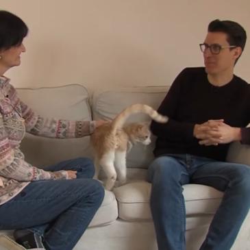 Jani Kukec: Pravilna prehrana mačk