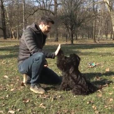 Igralec Tadej Pišek in njegova psička Dobby